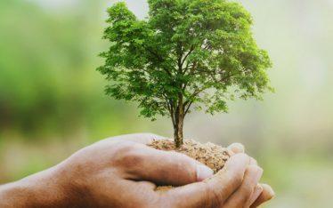 Nachhaltigkeit Langlebigkeit Henninger